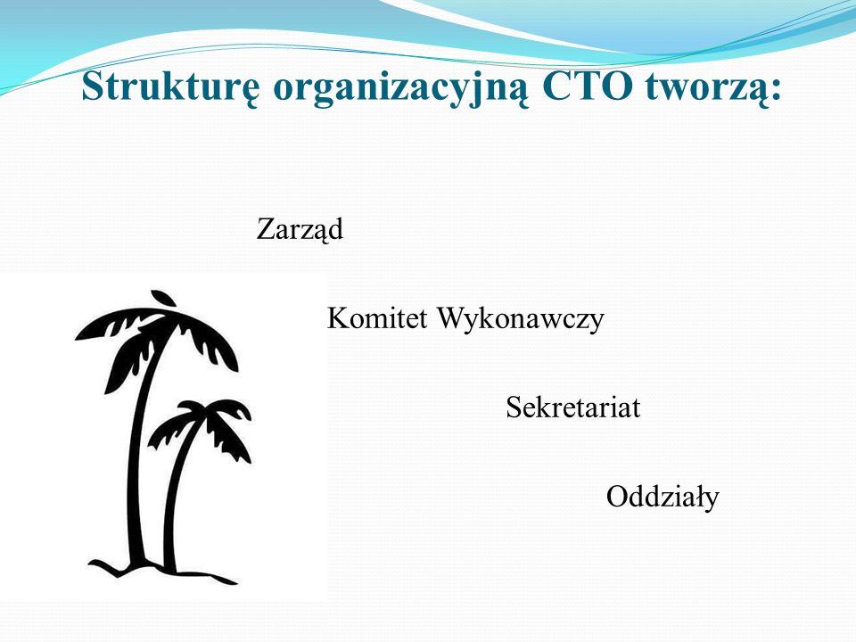 Strukturę organizacyjną CTO tworzą: