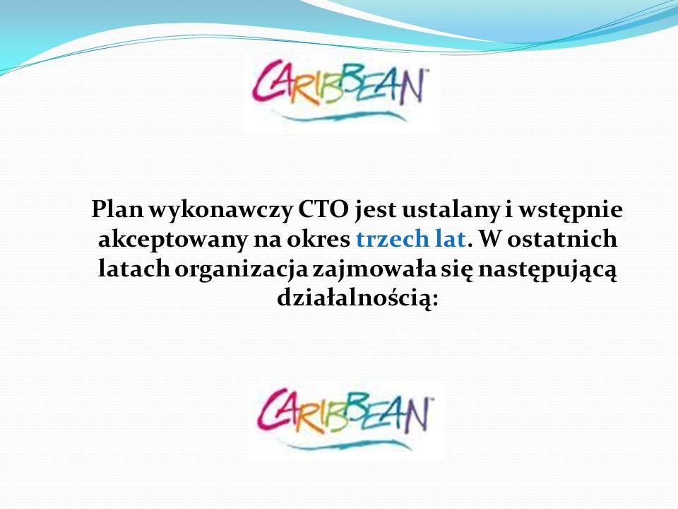 Plan wykonawczy CTO jest ustalany i wstępnie akceptowany na okres trzech lat.