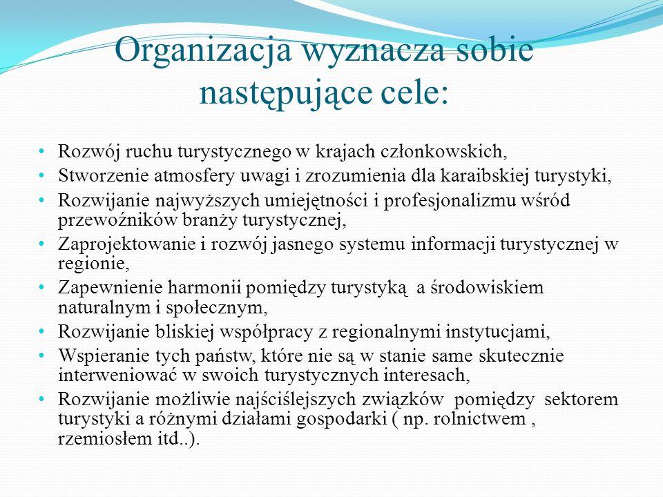 Organizacja wyznacza sobie następujące cele:
