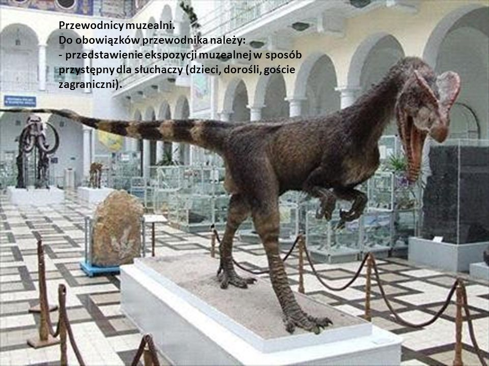 Przewodnicy muzealni.