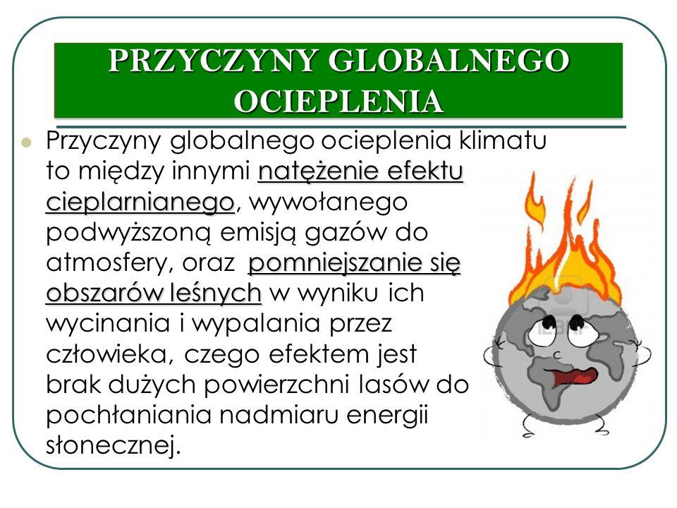 PRZYCZYNY GLOBALNEGO OCIEPLENIA