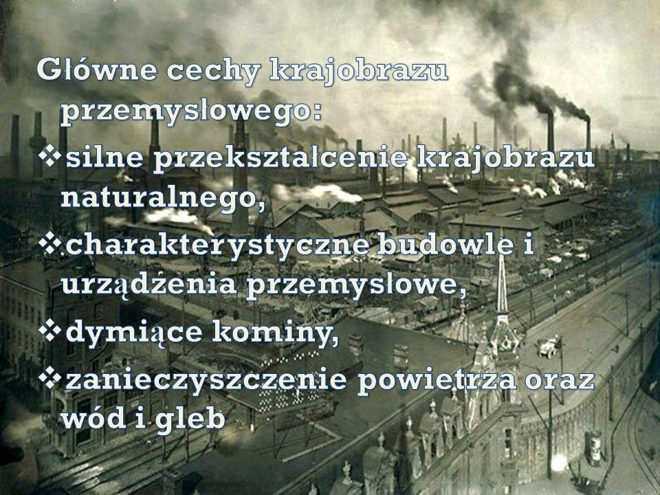 Główne cechy krajobrazu przemysłowego: