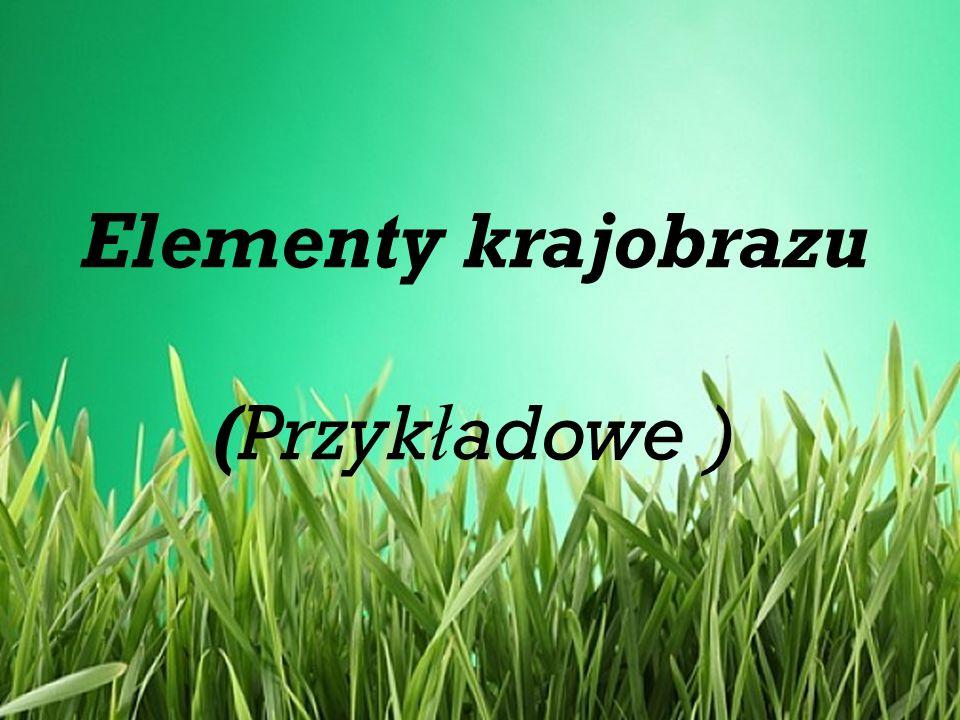 Elementy krajobrazu (Przykładowe )