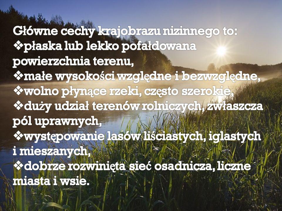 Główne cechy krajobrazu nizinnego to: