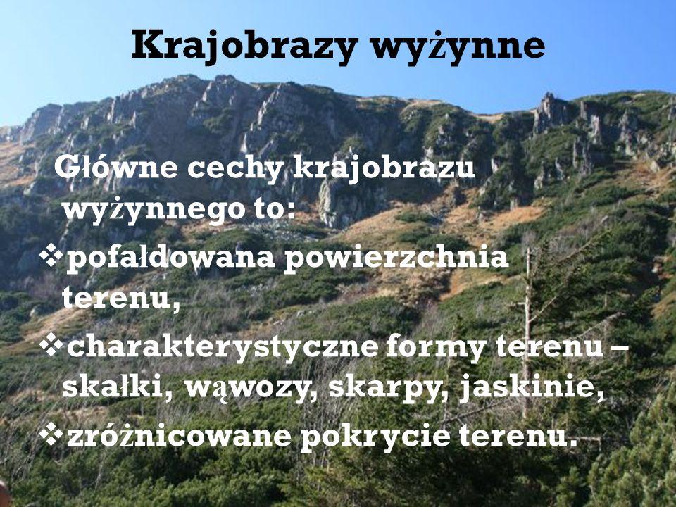 Krajobrazy wyżynne Główne cechy krajobrazu wyżynnego to: