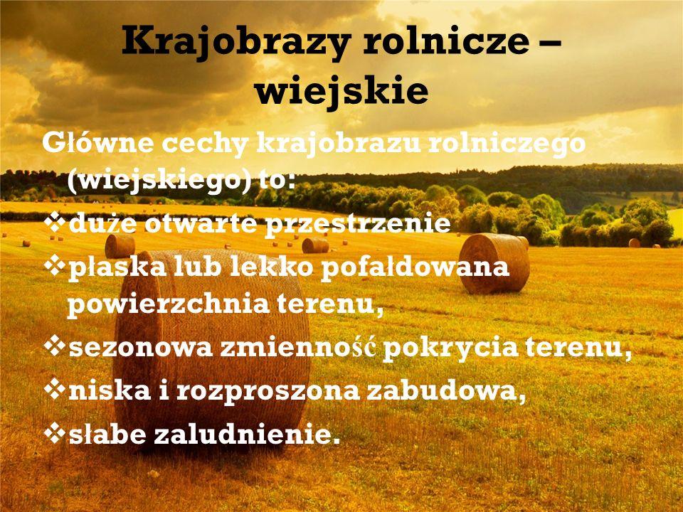 Krajobrazy rolnicze – wiejskie