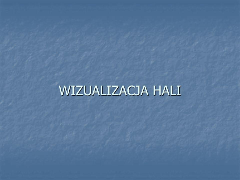 WIZUALIZACJA HALI