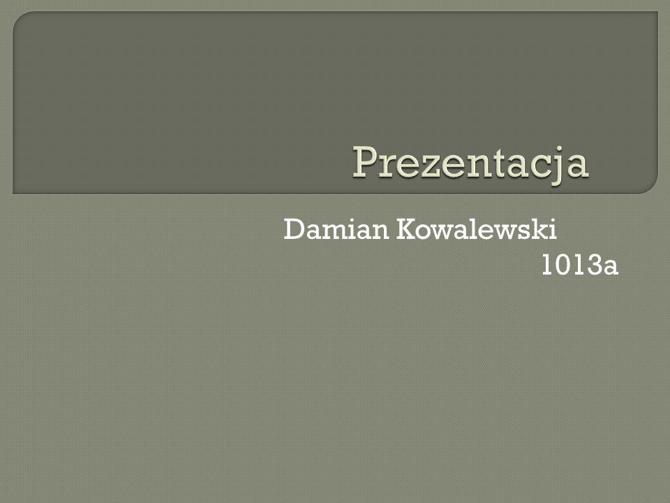 Prezentacja Damian Kowalewski 1013a