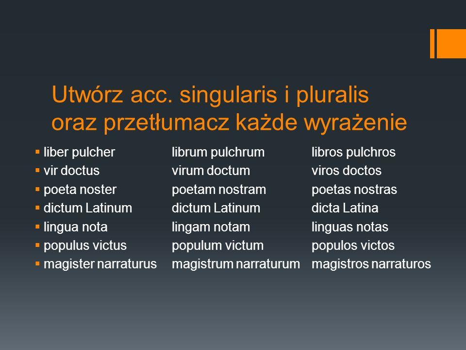 Utwórz acc. singularis i pluralis oraz przetłumacz każde wyrażenie