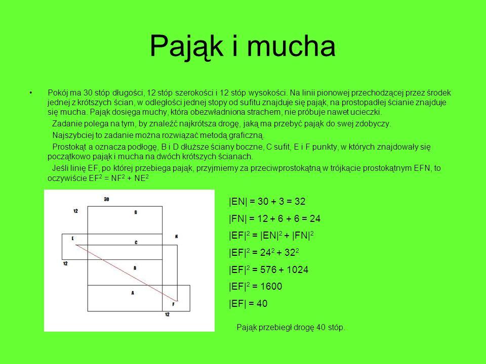 Pająk i mucha |EN| = 30 + 3 = 32 |FN| = 12 + 6 + 6 = 24