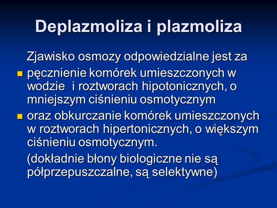 Deplazmoliza i plazmoliza