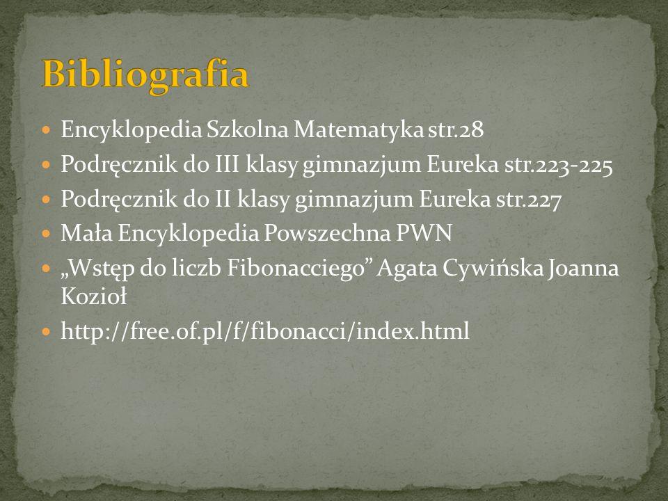 Bibliografia Encyklopedia Szkolna Matematyka str.28