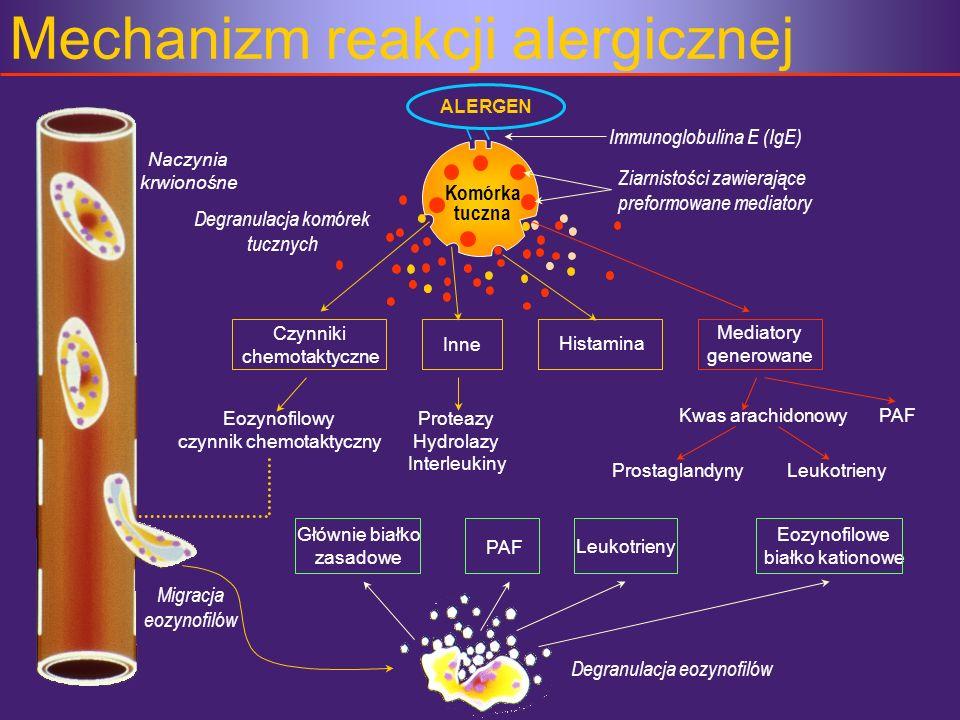 Mechanizm reakcji alergicznej