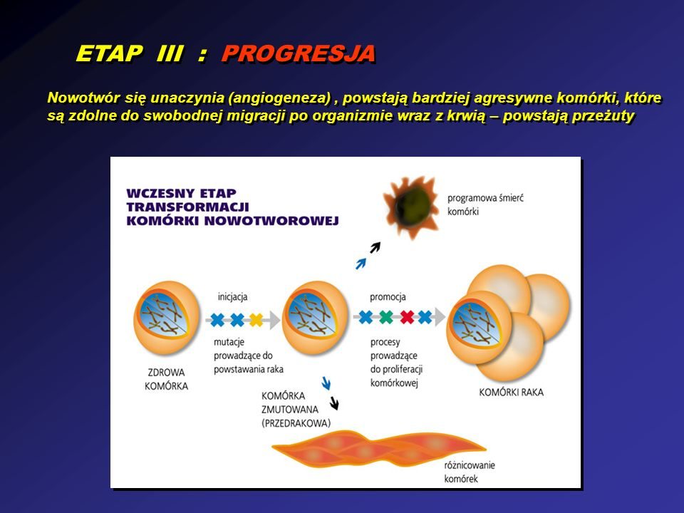 ETAP III : PROGRESJA