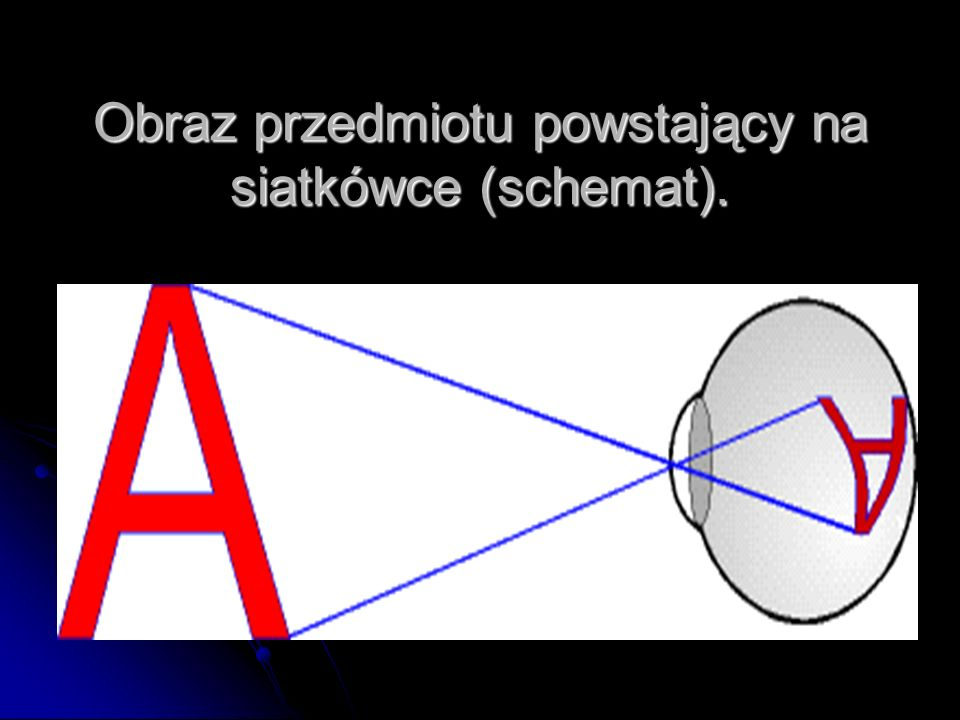 Obraz przedmiotu powstający na siatkówce (schemat).