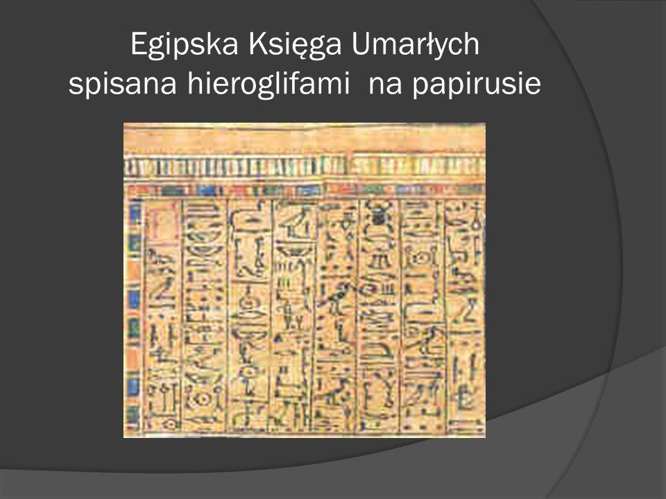 Egipska Księga Umarłych spisana hieroglifami na papirusie