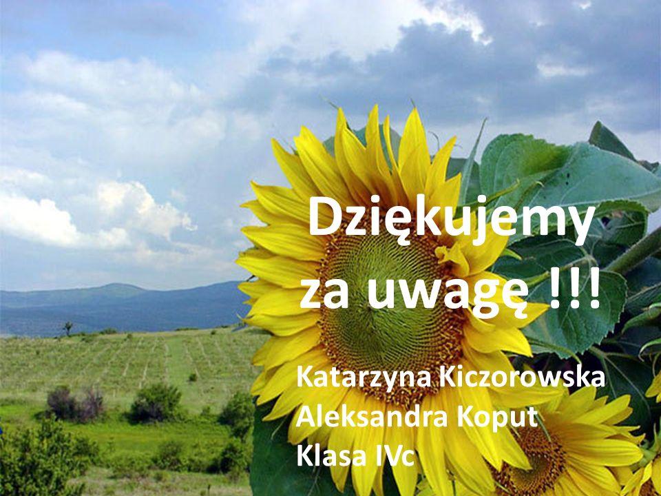Dziękujemy za uwagę !!! Katarzyna Kiczorowska Aleksandra Koput