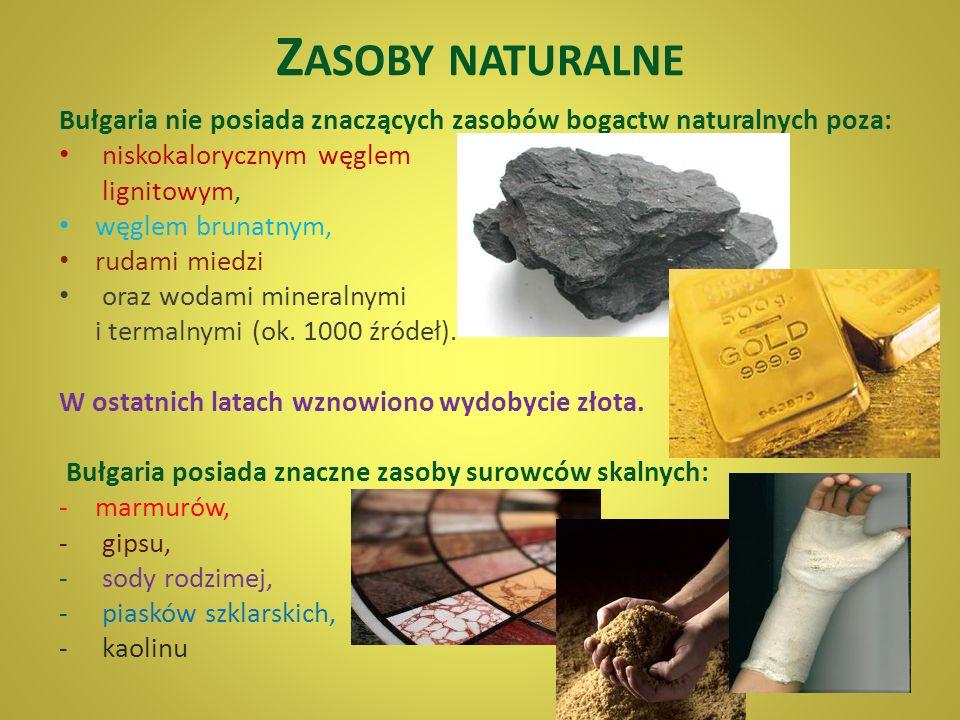 Zasoby naturalne Bułgaria nie posiada znaczących zasobów bogactw naturalnych poza: niskokalorycznym węglem.