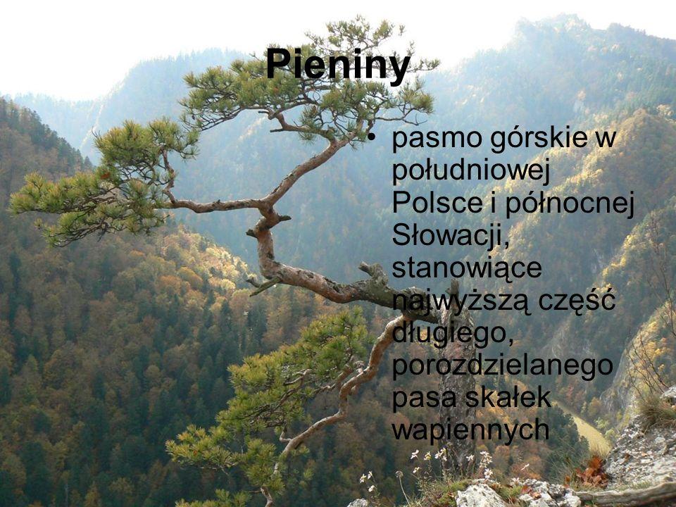 Pieniny pasmo górskie w południowej Polsce i północnej Słowacji, stanowiące najwyższą część długiego, porozdzielanego pasa skałek wapiennych.