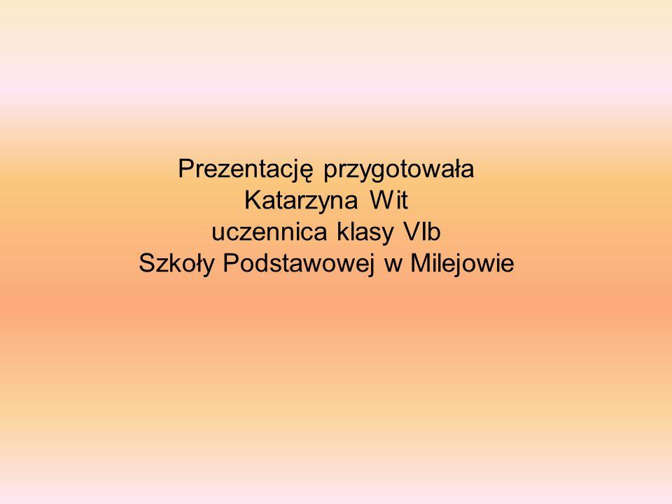 Prezentację przygotowała Katarzyna Wit uczennica klasy VIb Szkoły Podstawowej w Milejowie