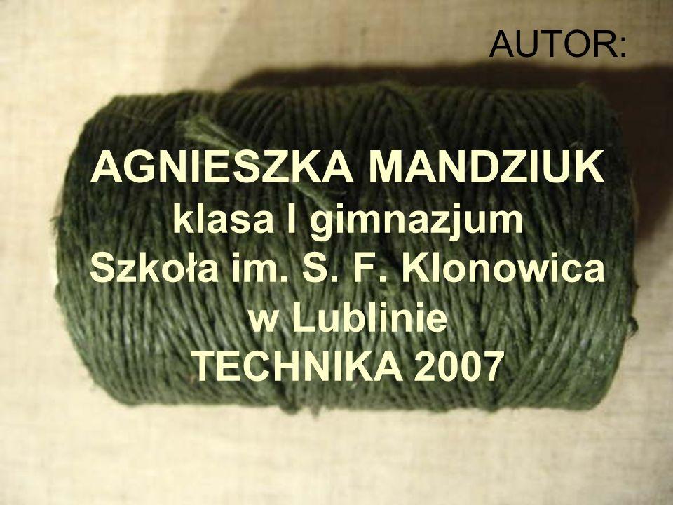 AUTOR: AGNIESZKA MANDZIUK klasa I gimnazjum Szkoła im. S. F. Klonowica w Lublinie TECHNIKA 2007