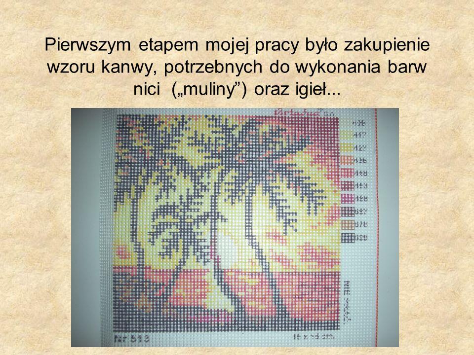 """Pierwszym etapem mojej pracy było zakupienie wzoru kanwy, potrzebnych do wykonania barw nici (""""muliny ) oraz igieł..."""