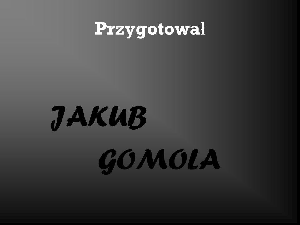 Przygotował JAKUB GOMOLA