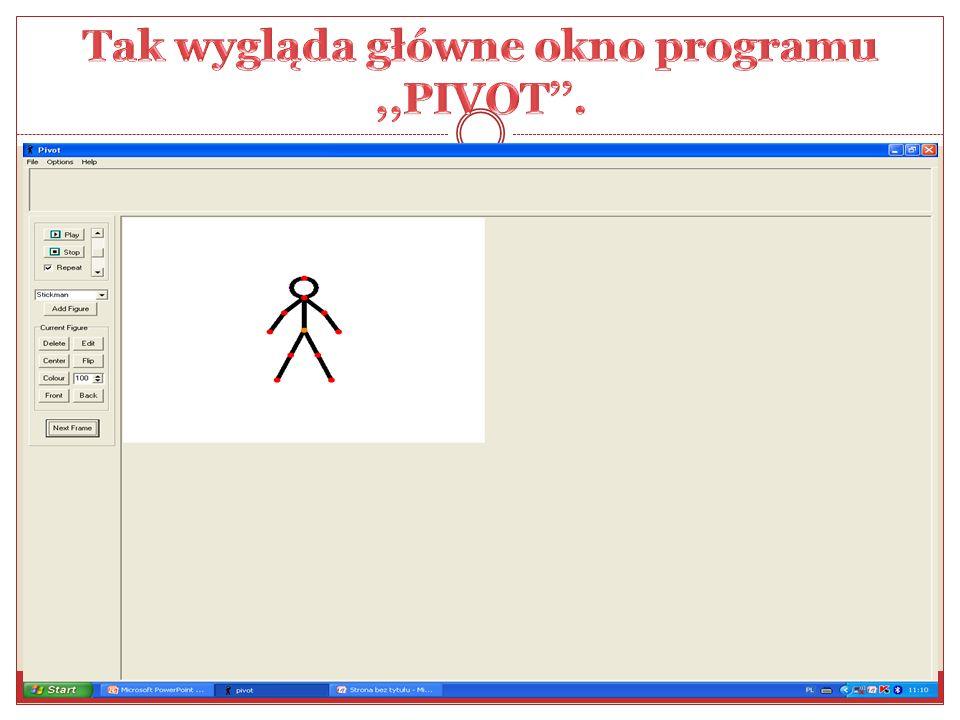 Tak wygląda główne okno programu ,,PIVOT''.