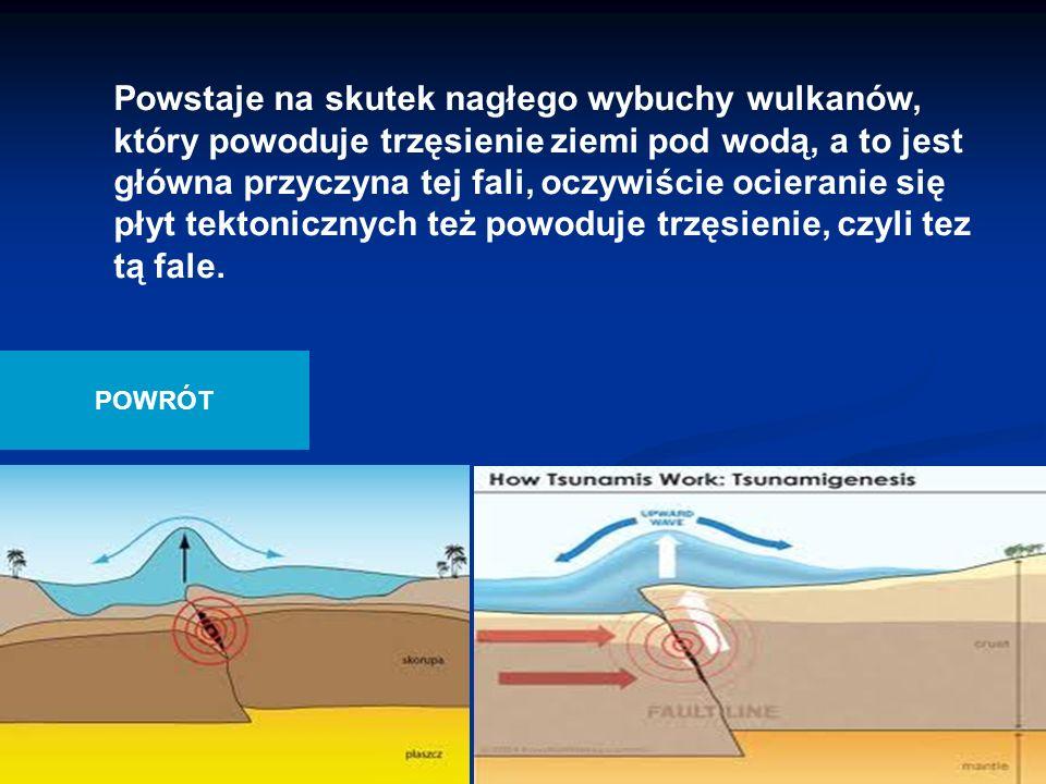 Powstaje na skutek nagłego wybuchy wulkanów, który powoduje trzęsienie ziemi pod wodą, a to jest główna przyczyna tej fali, oczywiście ocieranie się płyt tektonicznych też powoduje trzęsienie, czyli tez tą fale.