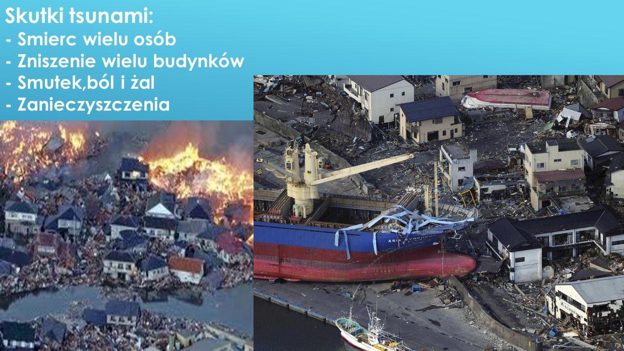 Skutki tsunami: - Smierc wielu osób - Zniszenie wielu budynków - Smutek,ból i żal - Zanieczyszczenia.
