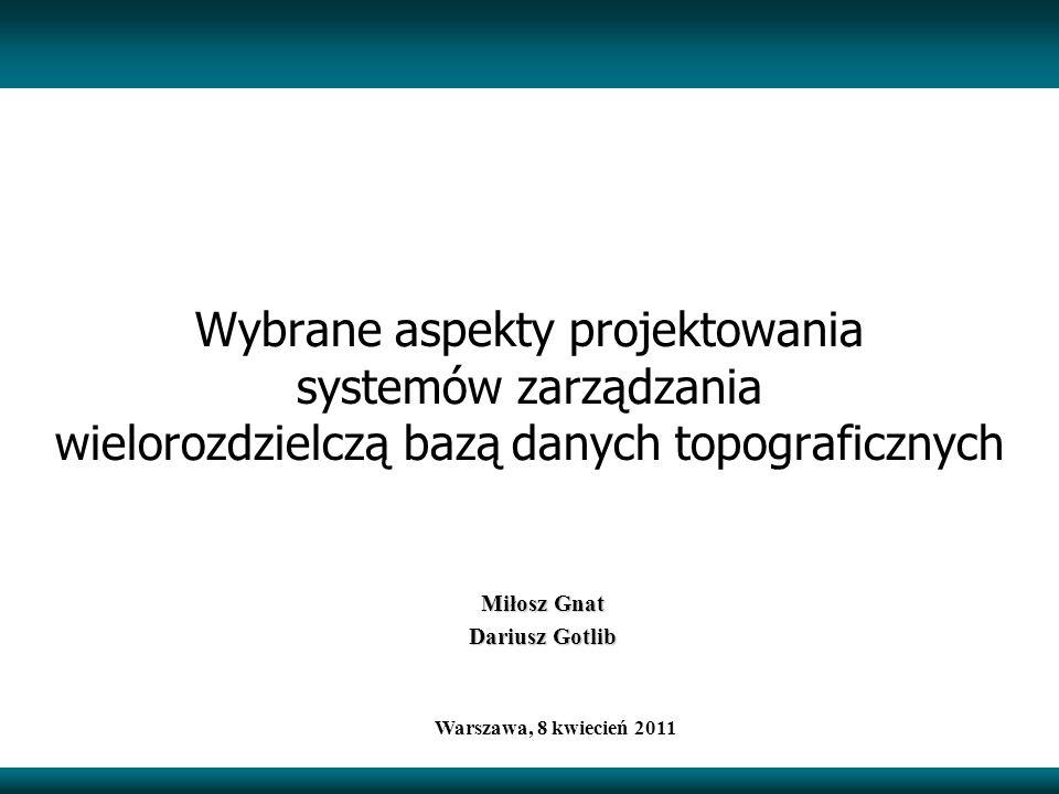 Wybrane aspekty projektowania systemów zarządzania wielorozdzielczą bazą danych topograficznych