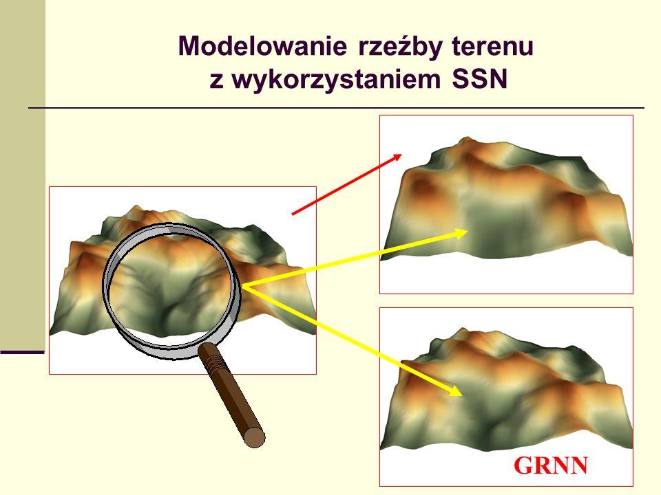 Modelowanie rzeźby terenu z wykorzystaniem SSN