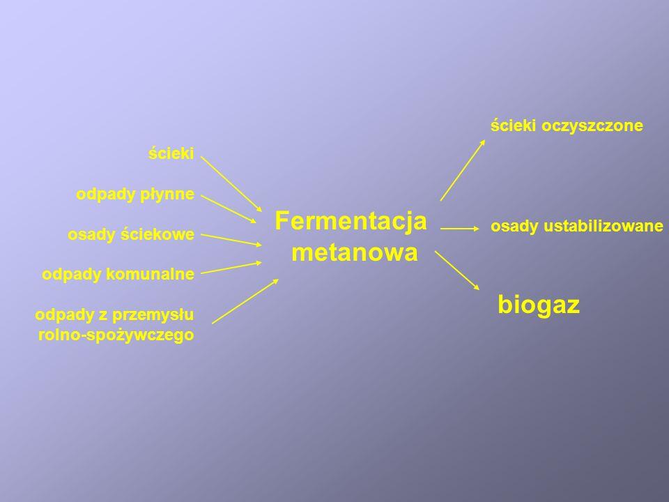 Fermentacja metanowa biogaz ścieki oczyszczone ścieki odpady płynne