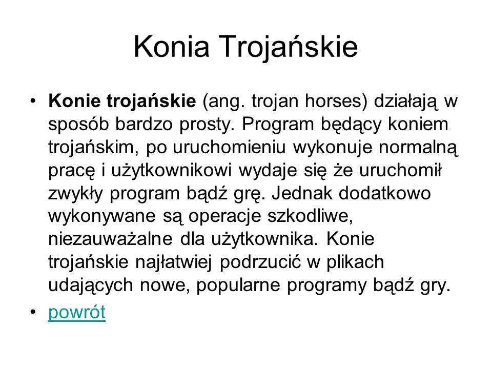 Konia Trojańskie