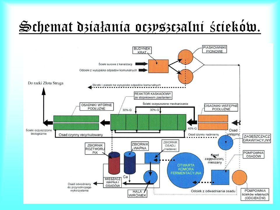 Schemat działania oczyszczalni ścieków.
