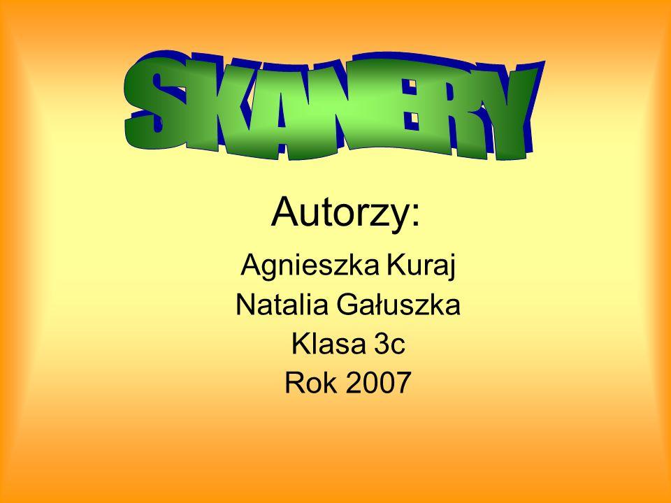 Agnieszka Kuraj Natalia Gałuszka Klasa 3c Rok 2007