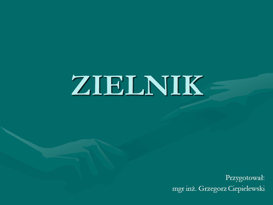 Przygotował: mgr inż. Grzegorz Ciepielewski