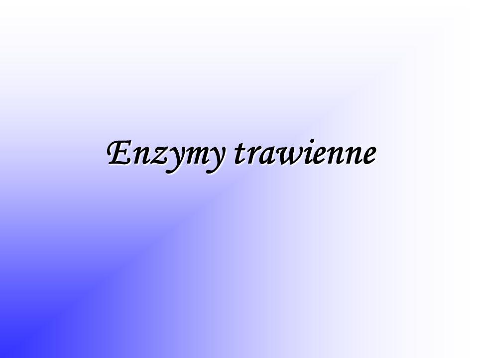Enzymy trawienne