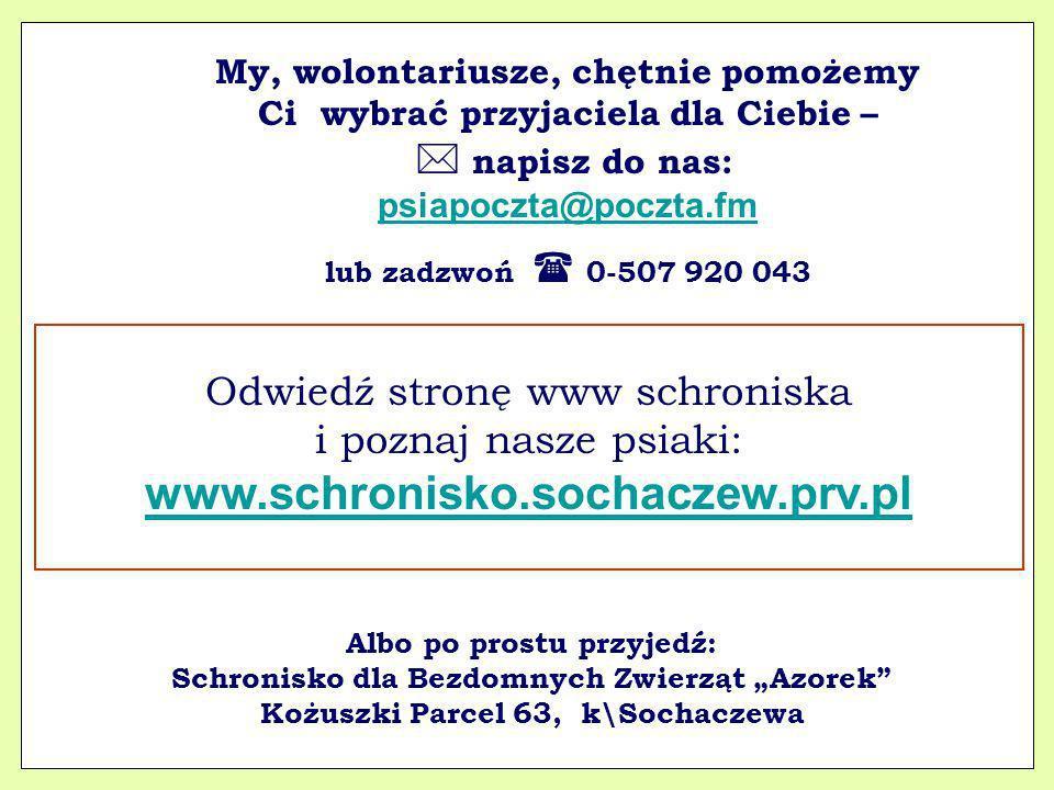 www.schronisko.sochaczew.prv.pl Odwiedź stronę www schroniska