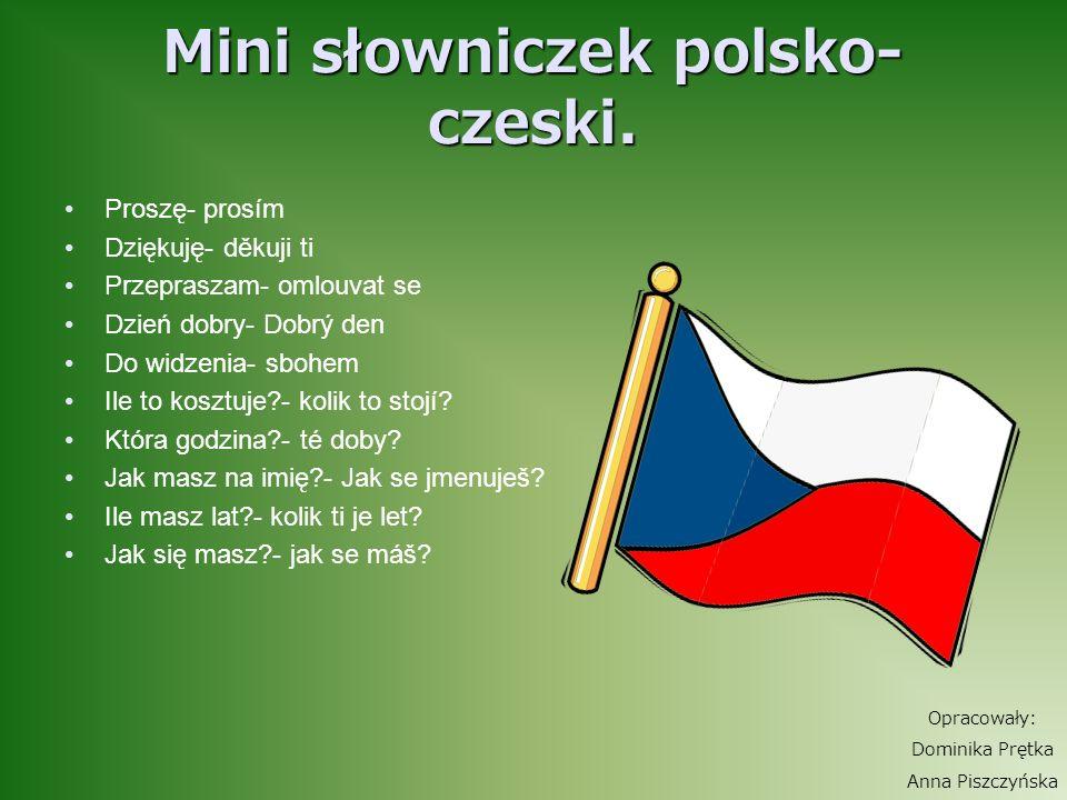 Mini słowniczek polsko-czeski.