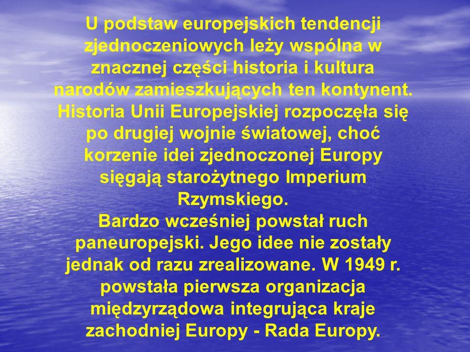 U podstaw europejskich tendencji zjednoczeniowych leży wspólna w znacznej części historia i kultura narodów zamieszkujących ten kontynent. Historia Unii Europejskiej rozpoczęła się po drugiej wojnie światowej, choć korzenie idei zjednoczonej Europy sięgają starożytnego Imperium Rzymskiego.
