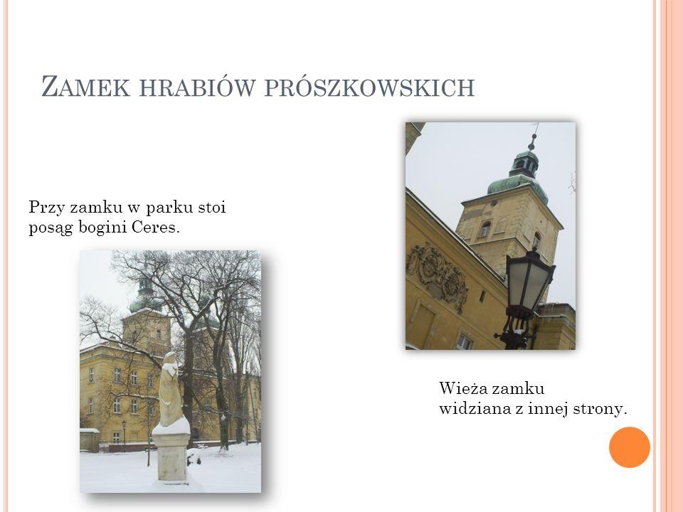 Zamek hrabiów prószkowskich