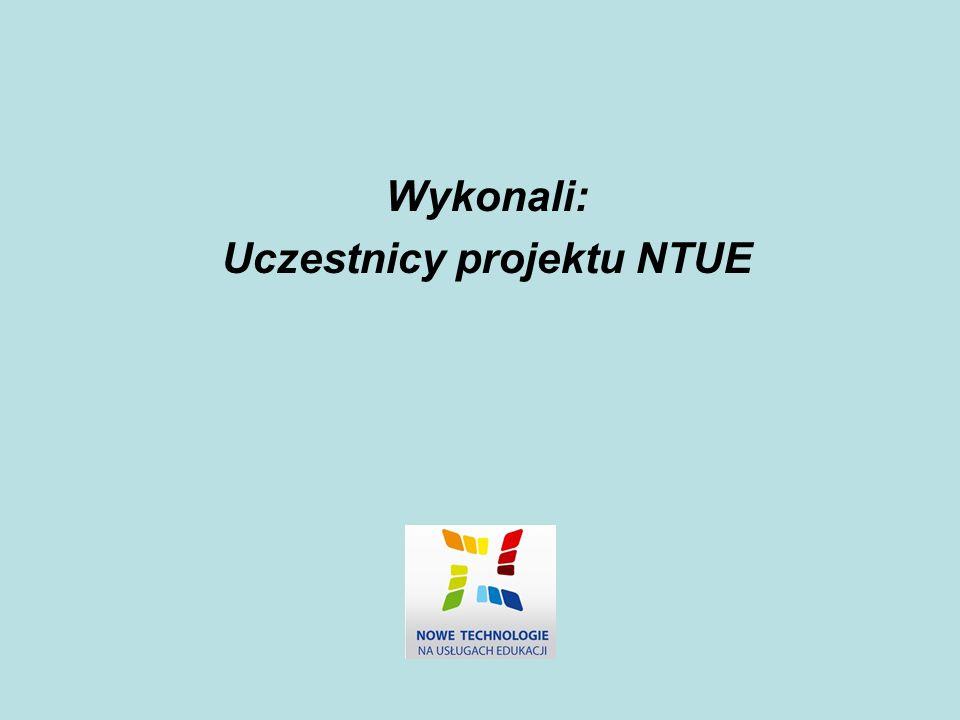 Uczestnicy projektu NTUE