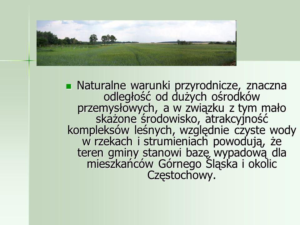 Naturalne warunki przyrodnicze, znaczna odległość od dużych ośrodków przemysłowych, a w związku z tym mało skażone środowisko, atrakcyjność kompleksów leśnych, względnie czyste wody w rzekach i strumieniach powodują, że teren gminy stanowi bazę wypadową dla mieszkańców Górnego Śląska i okolic Częstochowy.