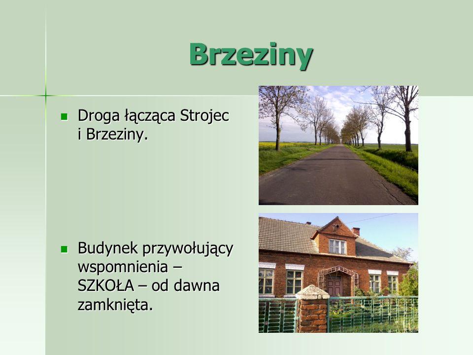 Brzeziny Droga łącząca Strojec i Brzeziny.