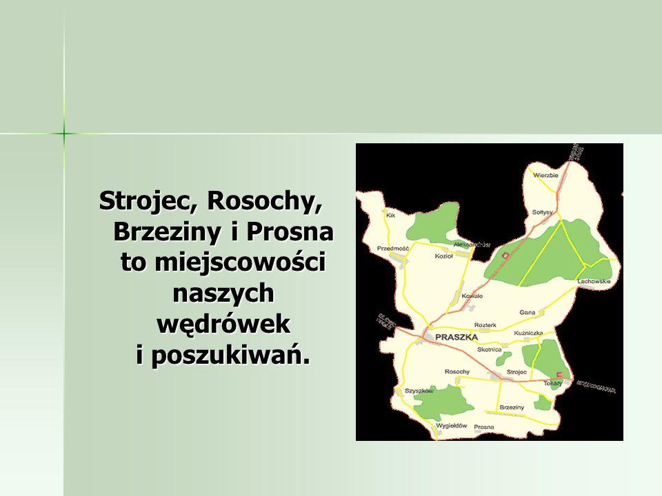 Strojec, Rosochy, Brzeziny i Prosna to miejscowości naszych wędrówek i poszukiwań.
