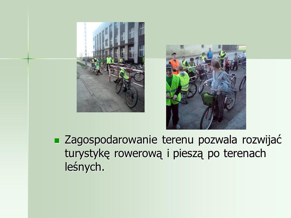 Zagospodarowanie terenu pozwala rozwijać turystykę rowerową i pieszą po terenach leśnych.