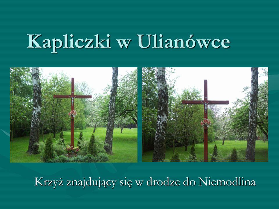 Krzyż znajdujący się w drodze do Niemodlina