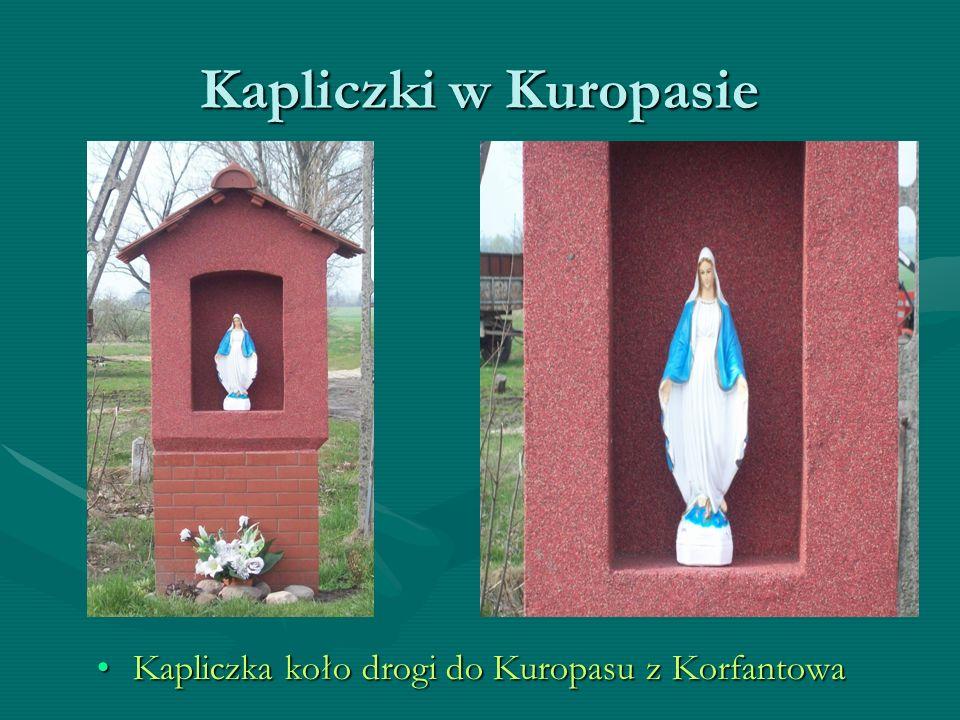 Kapliczki w Kuropasie Kapliczka koło drogi do Kuropasu z Korfantowa