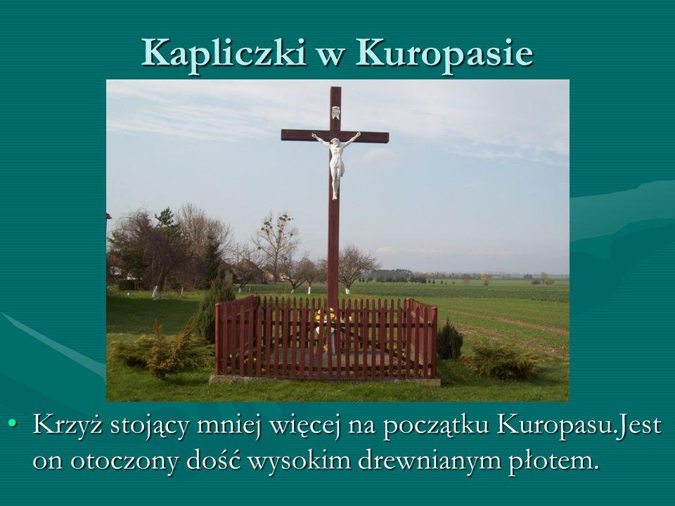 Kapliczki w Kuropasie Krzyż stojący mniej więcej na początku Kuropasu.Jest on otoczony dość wysokim drewnianym płotem.